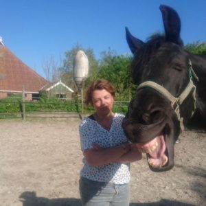 Individuele Paardencoaching
